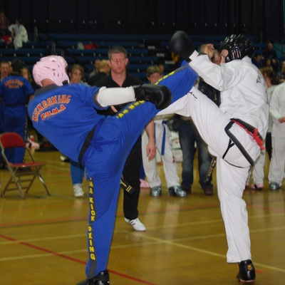 Professional Unification of Martial Arts